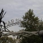 marshpark_5378