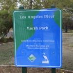 marshpark_5380