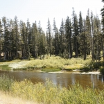 truckee-river-9712