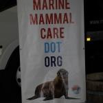 marine-mammal-care_0038