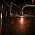 freetail-brewing_0047