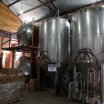 jester-king_0025