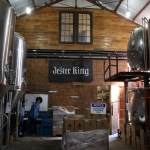 jester-king_0027