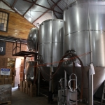 jester-king_0029