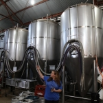 jester-king_0044