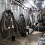 jester-king_0045