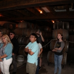jester-king_0048