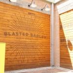 blasted-barley_2144
