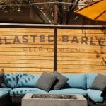 blasted-barley_2152
