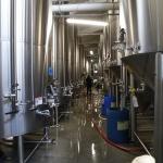 hop-valley-brewing013