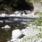 columbia-river-gorge017