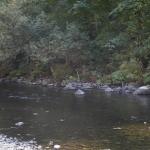 columbia-river-gorge019