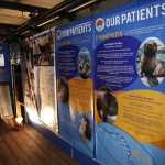 marine-mammal-care_0013