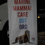 marine-mammal-care_0038