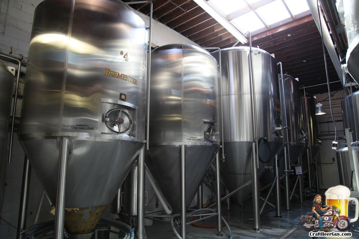 palmetto-brewing_0008