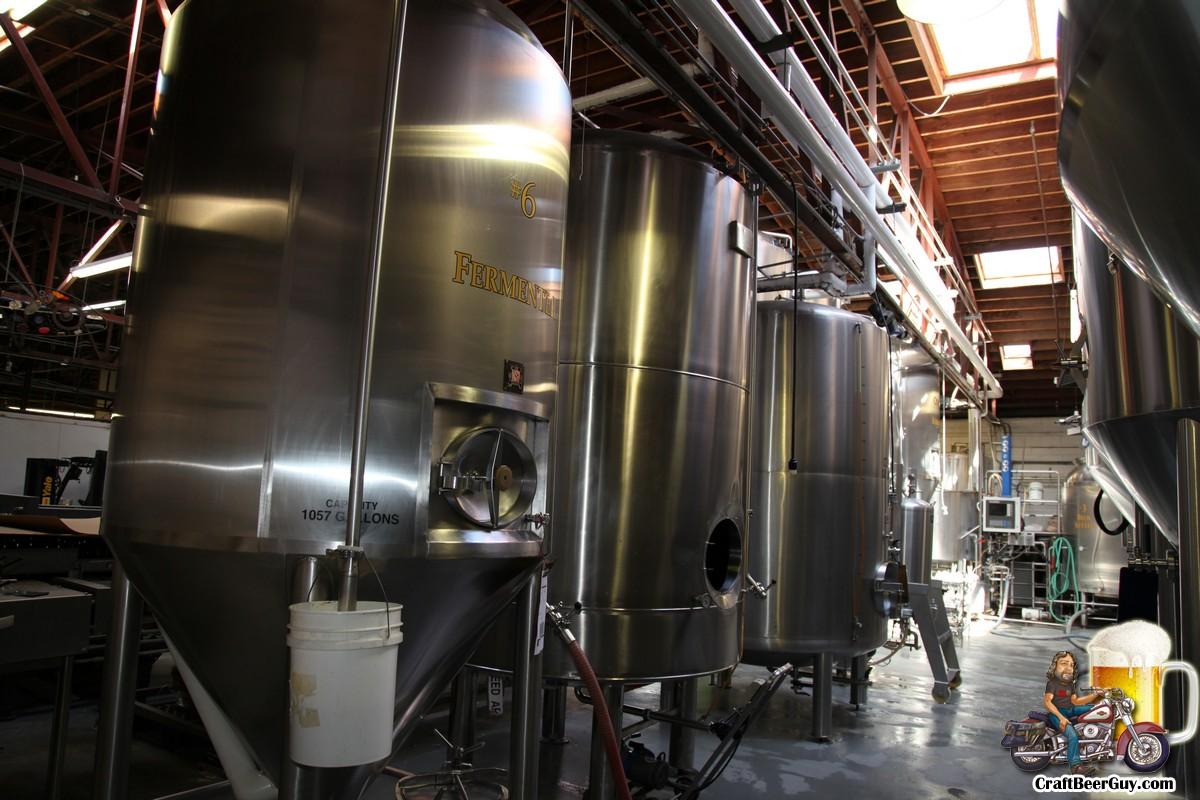 palmetto-brewing_0018
