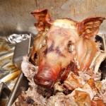 pig-roast-5559