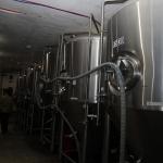 berryessa-brewing_013