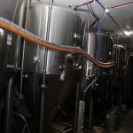 berryessa-brewing_014
