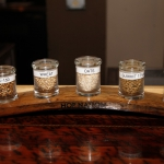 hop-nation-brewing_019