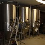 hop-nation-brewing_028