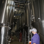 bale-breaker-brewing030